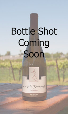 Photo of Coming Soon Wine Bottle